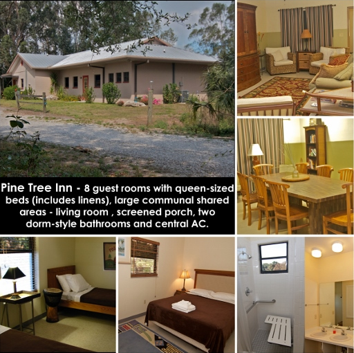 Pine Tree Inn Collage